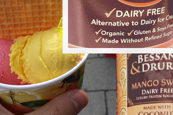 Lactose Free Ice Cream Alternatives
